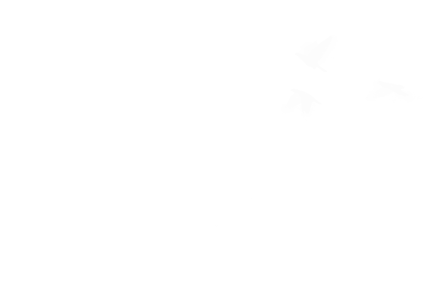 The Hello Darlin's